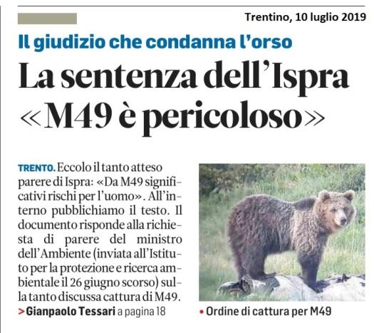 20190710_giudizio che condanna orso (1)