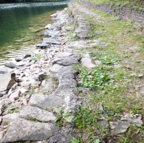 trattp pietra lago.png